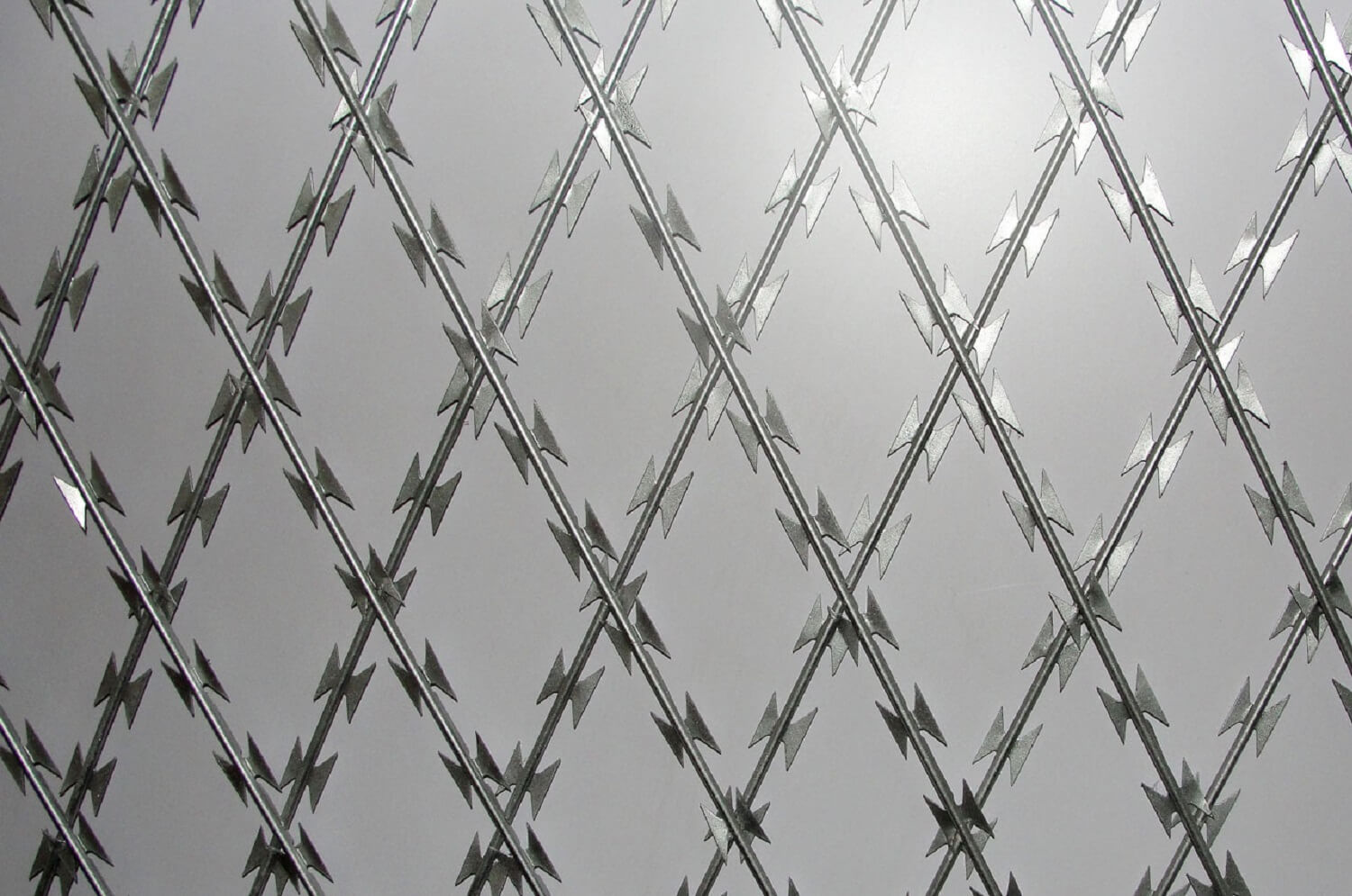 Razore Wire Concertina Wire - Pulu Group - Pulu Group, Building Material Manufacturer